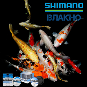 KamexKo_shop-category-Fishing-line-Shimano